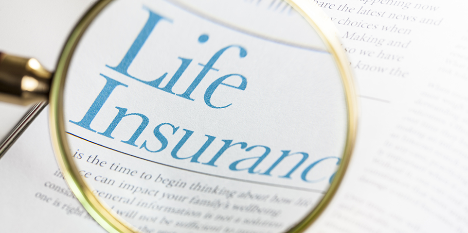 Life Insurance Magnify